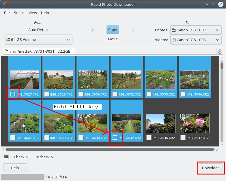 A quicker way to download photos on openSUSE – FOSS adventures